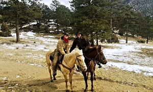 Ranahan Ranch: One-Hour Guided Horseback Ride for One, Two, or Four at Ranahan Ranch (Up to 38% Off)