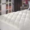 Up to 52% Off a Sealy Mattress Pad