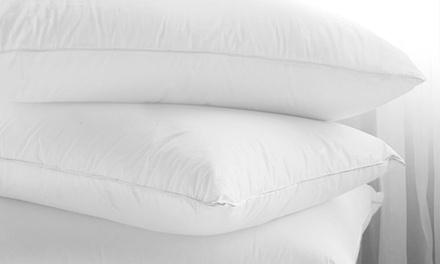 oreillers en plumes et duvet d 39 oie groupon. Black Bedroom Furniture Sets. Home Design Ideas