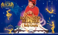Entrada al Circo Rody Aragón el 30 de diciembre desde 7,95 € en Palma de Mallorca
