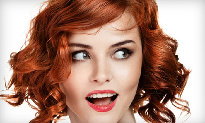 Gina's Hair Studio - Denver: Haircut Package with Optional Color or Highlights from Gina's Hair Studio (Up to 54% Off)