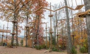 Up to 56%  Off Aerial Adventure Experience at Adventureworks at Adventureworks, plus 6.0% Cash Back from Ebates.