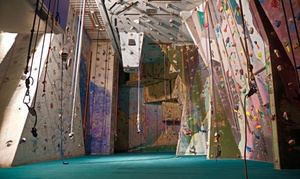 Up to 50% Off Rental and Lesson at Albany's Indoor RockGym at Albany's Indoor RockGym, plus 6.0% Cash Back from Ebates.