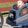 PetSafe Solvit Aluminum Bicycle Trailer