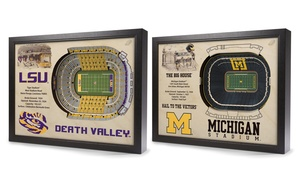 NCAA Stadium View 3D Wall Art