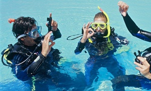 London School of Diving: Discover Scuba Diving Session for One or Two at London School of Diving (46% Off)