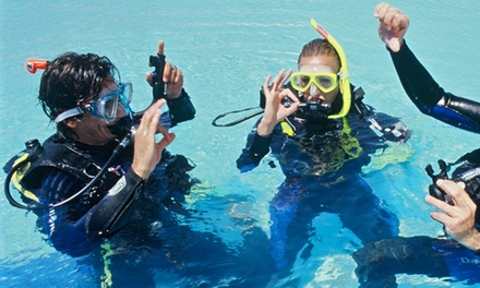 Discover Scuba Diving Session