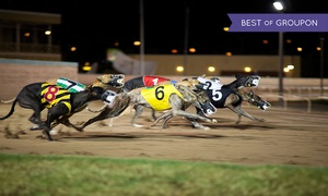 Swindon Greyhounds: Night at the Races with Burger and Beer for Two at Swindon Greyhounds (Up to 73% Off)