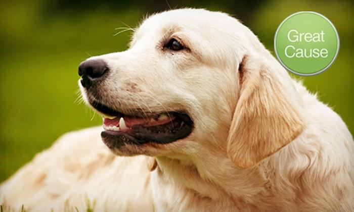 Lil Paw Prints Animal Rescue Haven - Cincinnati: $10 Donation to Sterilize Rescued Dogs