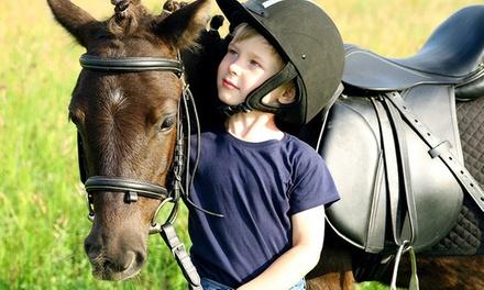 1 séance découverte de 30 min en poney pour enfants de 3 à 8 ans à 9,99 € au Centre Equestre de la Bruche