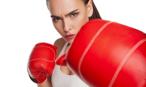 Everson's Karate & Cardio Kickboxing: $11 for $20 Groupon — Everson's Karate & Cardio Kickboxing