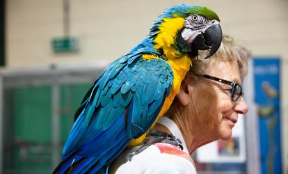 The Pet Show, Adult or Family Tickets, 18–19 August at Staffordshire County Showground (Up to 45% Off)