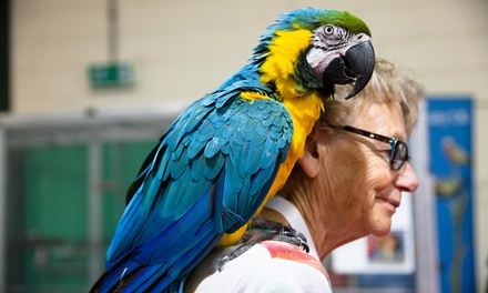 The Pet Show, Adult or Family Tickets, 18–19 August at Staffordshire County Showground