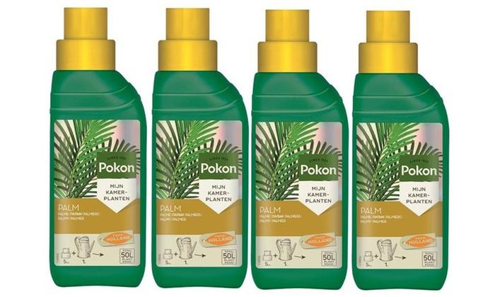 Engrais de palmier pokon palm groupon shopping - Engrais pour palmier ...