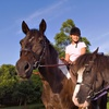Up to 49% Off Semiprivate Horseback-Riding Lessons