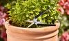 Garden Gear tuingereedschap
