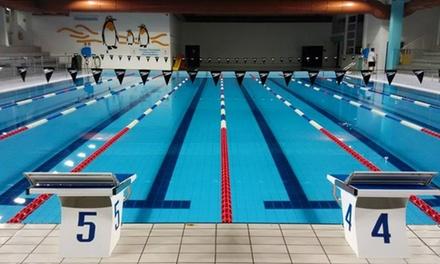 Fino a 8 lezioni di nuoto o fitness in acqua alle Piscine comunali di Montebelluna (sconto fino a 62%)