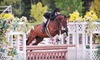 Winding Hill Riding Club and Show Stables - West Hills: $55 for Two 30-Minute Private Horseback Riding Lessons at Winding Hill Riding Club & Show Stables ($110 Value)