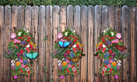Hanging Butterfly or Hummingbird Flower Seed Bags With Soil Block (1-, 2-, or 4-Pack)