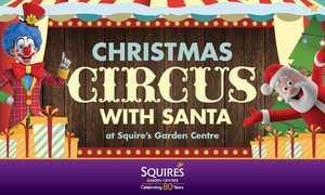 Christmas Circus with Santa: 'Santa's Got Talent' Christmas Circus With Present From Santa,27 November-4 December, Two Locations (Up to 42% Off)