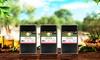 3, 6 o 9 bottiglie di olio extravergine di oliva Don Paco