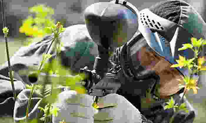 Survival Game of Texas - North Central Beltway 8: All-Day Paintball Outing for Two, Four, or Eight at Survival Game of Texas (Up to 51% Off)