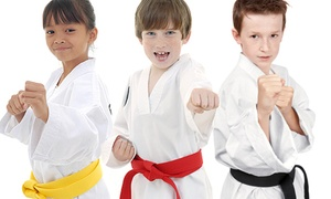 Reid's Shaolin Martial Arts: Up to 88% Off Karate Classes at Reid's Shaolin Martial Arts