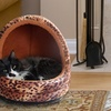 Animal-Print Hooded Cat Bed