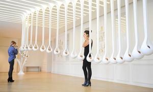 Le Grand Musée Du Parfum: Une entrée jeune, senior, étudiants ou adultes ou pass familleet connaissance des arts dès 10€au Grand Musée Du Parfum