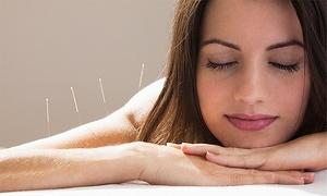 Naturheilpraxis Sonja Müller: 60 Min. Akupunktur zum Thema nach Wahl (Allergie, Sucht uvm) bei Heilpraktikerin Sonja Müller(bis zu 66% sparen*)
