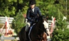 Valley View Acres - Dorr: One, Three, or Five Private One-Hour Horseback-Riding Lessons at Valley View Acres (Up to 51% Off)