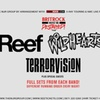 Reef, The Wildhearts, Terrorvision