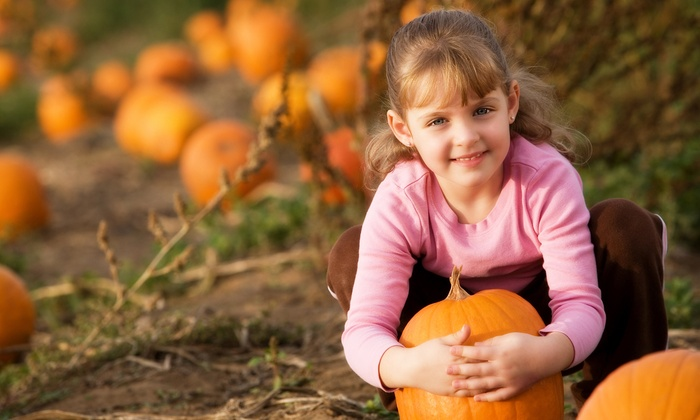 Fiesta Farm - San Antonio: Farm Outing with Pumpkin Patch, Pony Ride, Hayride, Haunted House, and Petting Zoo for 2 or 4 at Fiesta Farm (Half Off)