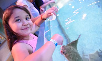 Up to 39% Off Birthday Package & Entry at SeaQuest Woodbridge