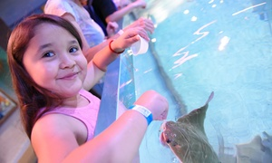 Up to 32% Off Birthday Package & Entry at SeaQuest Woodbridge