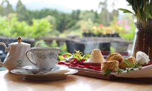 Aston Norwood Cafe and Function Centre: Devonshire Tea + Garden Pass for 1 (From $10), 2 (From $19) or 4 People (From $35) at Aston Norwood (From $18.90 Value)