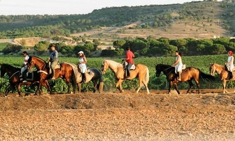 Paseo a caballo para 2 o 4 personas por el Pinar de Simancas desde 29,90 € en Caballos de Simancas