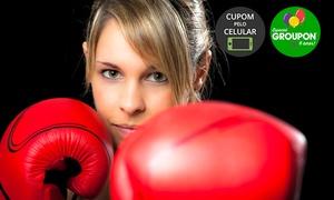 Pulse Fit: #NiverGroupon - Pulse Fit - Hugo Lange: 1, 4, 8 ou 12 meses de aulas de boxe
