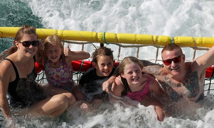 90Minute Summer Boom Netting Cruise for One Child $15 or One Adult $19 with Jervis Bay Wild Up to $45 Value