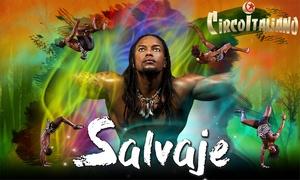 """Il Circo Italiano: Entrada al espectáculo """"Salvaje"""" del Circo Italiano del 27 de abril al 6 de mayo desde 6,95 € en Oviedo"""