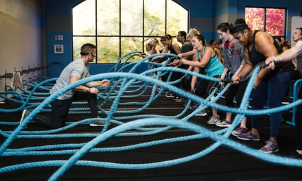 $45 for One Month of Unlimited Boot-Camp Classes for One at Burn Boot Camp ($149 Value)