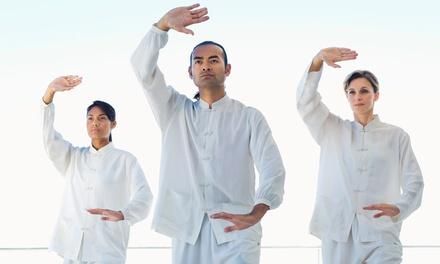 3 oder 6 Wochen Yoga und Qi-Gong in der Asia Sport Akademie (bis zu 72% sparen*)