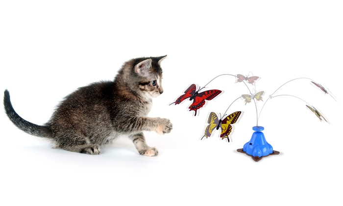 Whirling Wiggler Cat Toy