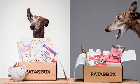 Abono de 1 mes de suscripción a Patasbox, la caja mensual a domicilio con productos para perros por 9,95 €