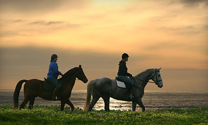 Blue Moon Riding School - Half Moon Bay: Horse-Riding Lesson and Drinks at Blue Moons Riding School (Up to 71% Off). Four Options Available.