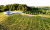 Up to 49% Off Wine Tasting at Rove Estate Vineyard and Winery