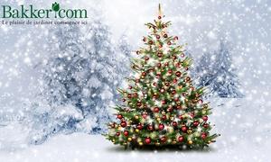 Bakker: Votre Sapin de Noël Nordmann livré directement à domicile, dès 19,99 € sur le site Bakker