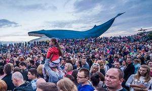 Ocean Park: Wejście na koncert w ramach Festiwalu Disco Polo i więcej od 54,99 zł w Ocean Parku we Władysławowie