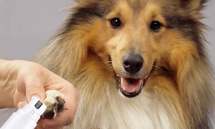 Up To 75% Off Pet Nail Grinder | Groupon