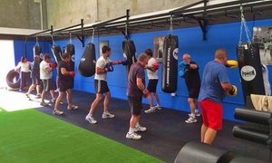 The Fitness Box: One-Month Gym Access for One ($19) or Two People ($35) at The Fitness Box, Malaga (Up to $424 Value)